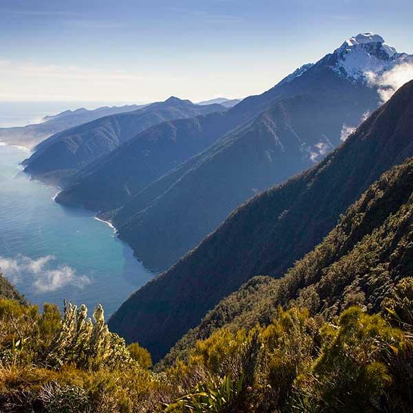 Milford Sound Overhead